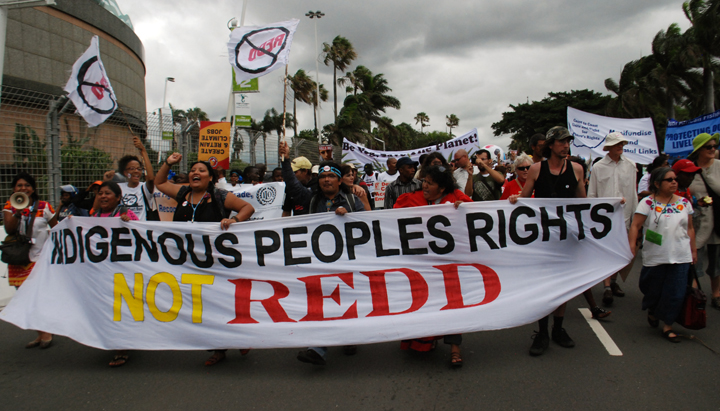 Indigenous Peoples Rights Not REDD