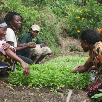 Janet Maro (2nd from left) agronomist and Sustainable Agriculture Tanzania project manager teaches her Bustani ya Tushikamane (Garden of Solidarity) group. In 2013 she trained some 2700 farmers, 46% of whom were women. Photo: Biovision