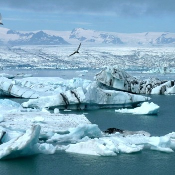 Climate change impact in the Arctic
